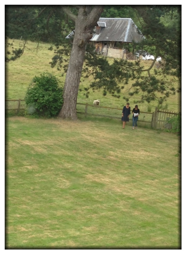 I took this picture of Christine and Melinda from one of the upper windows of the house. They had been chatting with the neighbor's sheep.